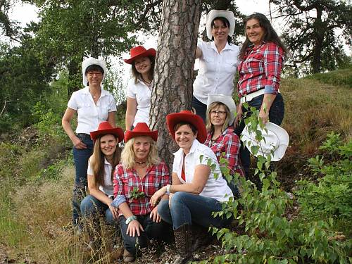High Mountain Line Dancers aus Prackenbach
